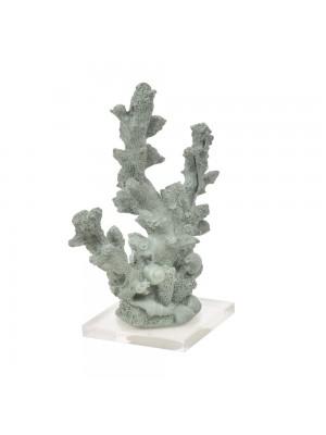 Coral Fino Oliva