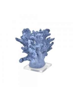 Coral Largo Azul Lápis